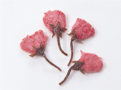 桜花塩漬軸切2cm